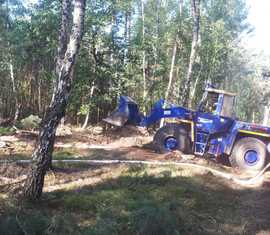 Verschiedene Ortsverbände des THW unterstützen die Kräfte der Feuerwehr bei den Löscharbeiten in der Lieberoser Heide