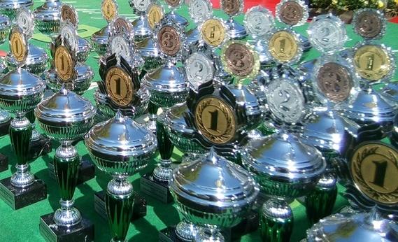 Sympbolbild: Eine Menge Pokale warten drauf, übergeben zu werden