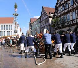 Handdruckspritzengruppe aus Terpe belegt 3. Platz bei den Landesmeisterschaften in Baden-Württemberg