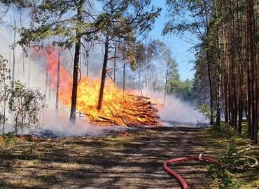 Waldbrand in Groß Kölzig